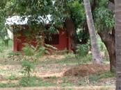 My hut